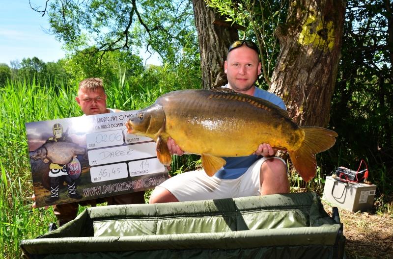 5-big fish