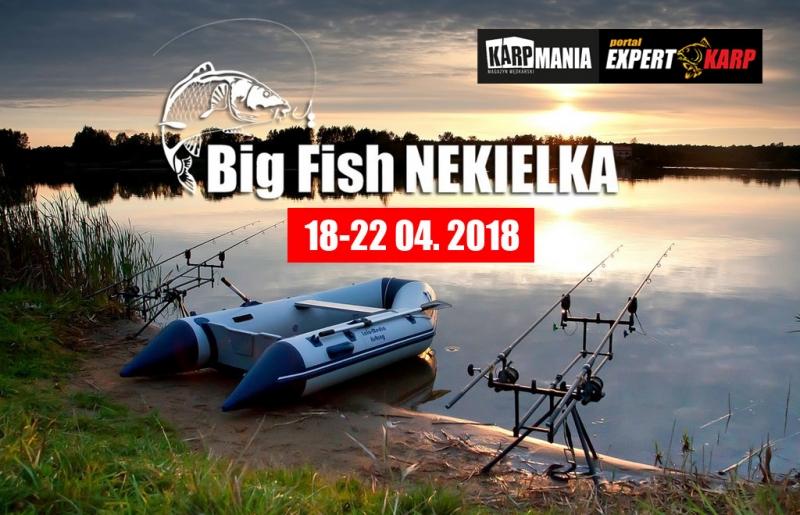 bigfishnekielka-2018...
